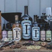 Inn-out Spirituosen Gin Ferdinand